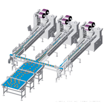 Automatic Flow wrapping Line