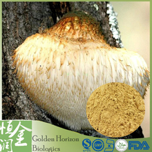 Factory Price Natural Lion's Mane Mushroom Extract Hericium Erinaceus Extract Powder 10%-50% Polysacchrides