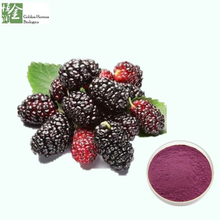 Natural Mulberry Fruit Extract Powder Anthocyanins 5% 25% Mulberry Extract Powder Price