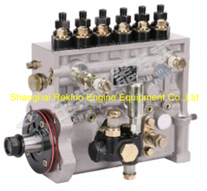 BP2209 T9600-1111100A-C27 Longbeng fuel injection pump for Yuchai YC6T