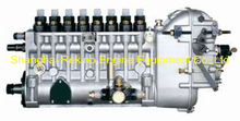 BP6823A 8170ZC-1.31.00 Longbeng fuel injection pump for Weichai 8170ZC-1