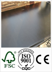 21mm Construction Plywood with Black Film (HBC001)