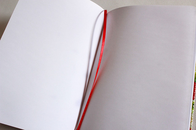 PVC leather notebook (15)
