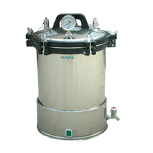 Portable Pressure Steam Sterilizer FSF-LD