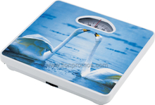 Cheap Advertising Gift Mechanical Promotional bath Scale