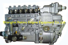 BP20048 612601080754 Longbeng fuel injection pump for Weichai WP10D200E201