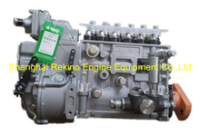 BP5458B 612601080342 Longbeng fuel injection pump for Weichai WD615