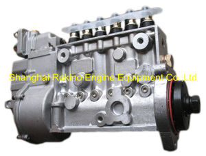 BP22E0 612630030207 LONGBENG Fuel injection pump for Weichai WP12