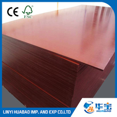 Red-film-faced-plywood