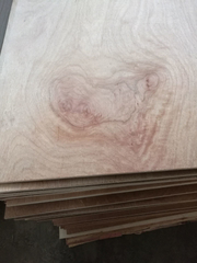 18mm Meranti Plywood Poplar Core E1 Glue BB/CC Grade