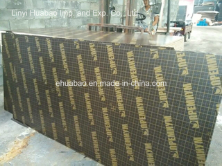 Birch Core Film Faced Plywood Phenolic Glue