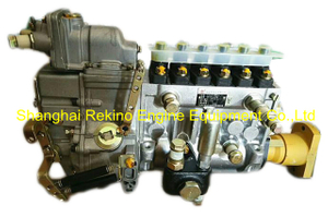BP12P2 13052788 Longbeng fuel injection pump for Weichai WP6C165-18