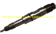 0445120087 612630090008 common rail fuel injector for Weichai WP10