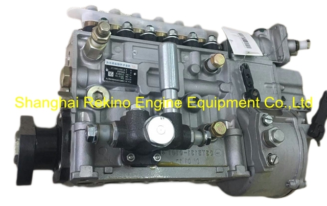 BP22G6Y 612630030261Y LONGBENG fuel injection pump for Weichai WP12