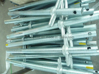 Steel Galvanized Scaffolding/Scaffold Screw Jack