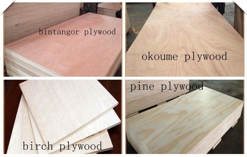 Bintangor Okoume Birch Pine Face Plywood