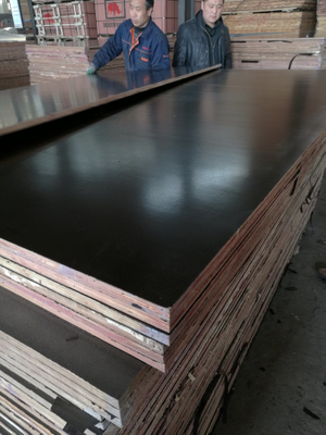 Poplar Core Film Faced Plywood Made in China