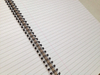 Fancy design A4 double spiral wire binding notebook single line