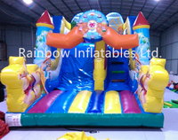RB8016(5.4x3.5x4m) Inflatable popular Colorful printing amusement park slide