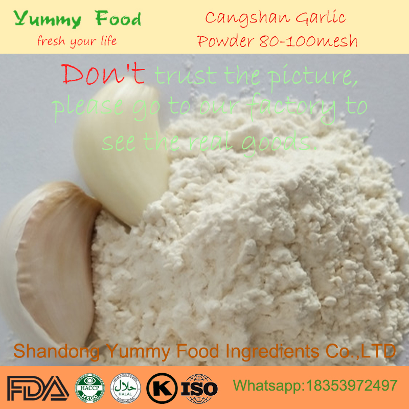 High Flavor Dehydrated Garlic Powder 80-100mesh to North America