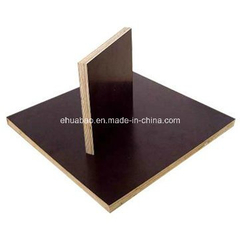 China Good Quality Film Faced Plywood (black, brown film)