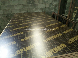 Birch Shuttering Film Faced Plywood/Marine Plywood with Logo (HB004)