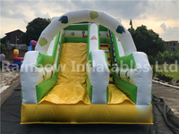 RB6105(5x2.5x3m) Inflatable small Animal theme double slide