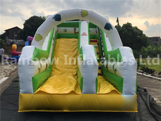 High Quality Small Commercial Inflatable Dry Slide for Toddlers