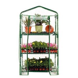 Plant Flower Warm House Green House