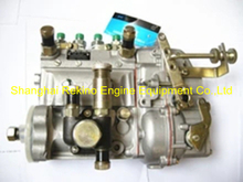 13021223 10400874053 BYC fuel injection pump for Weichai TD226B-4D (WP4D)