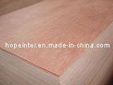 Bintangor Plywood / Commercial Plywood (HL006)
