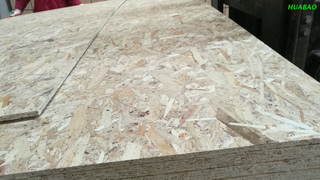 OSB Boards Poplar+Pine Core For Packing And Furnitures-Oriented Strand Boards