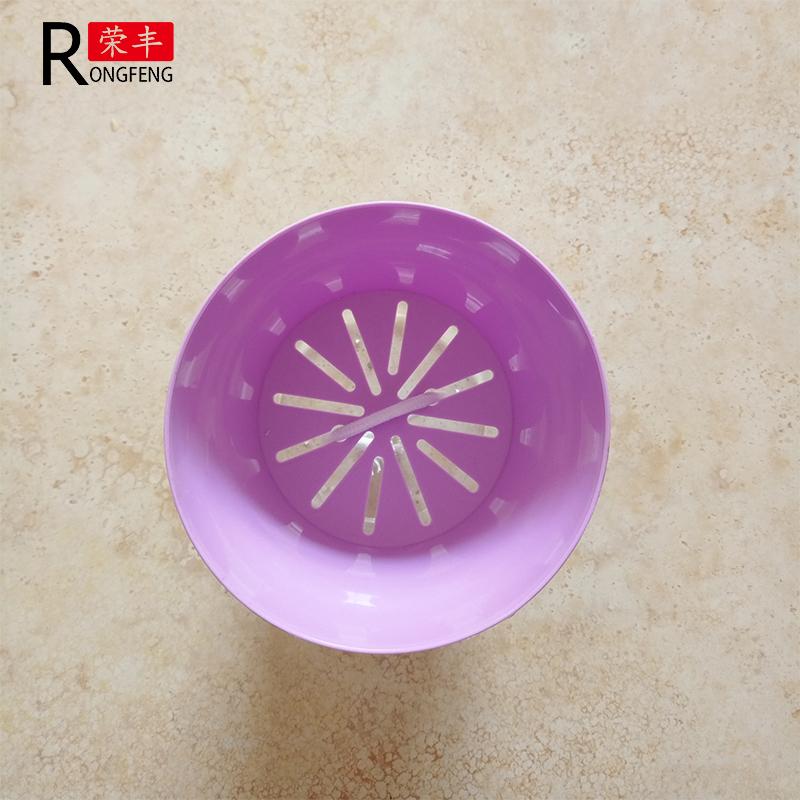 紫色花盆上面