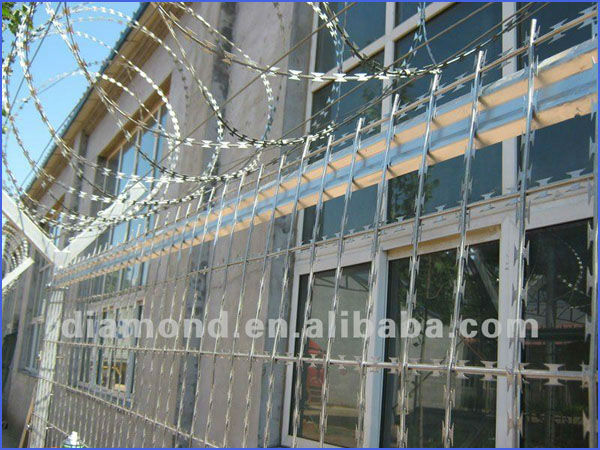 Concertina barbed Wire/ galvanized concertina barbed wire factory with SGS.BV inspection