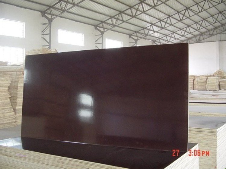 F17 Formwork Plywood with Dynea Phenolic Glue 72 Hours