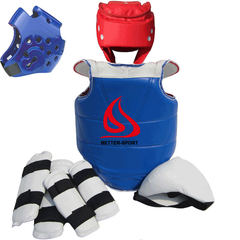 taekwondo protector set