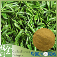 Antioxidant Green Tea Polyphenols