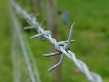 Galvanized Steel Twisted Security fence Barbed Wire
