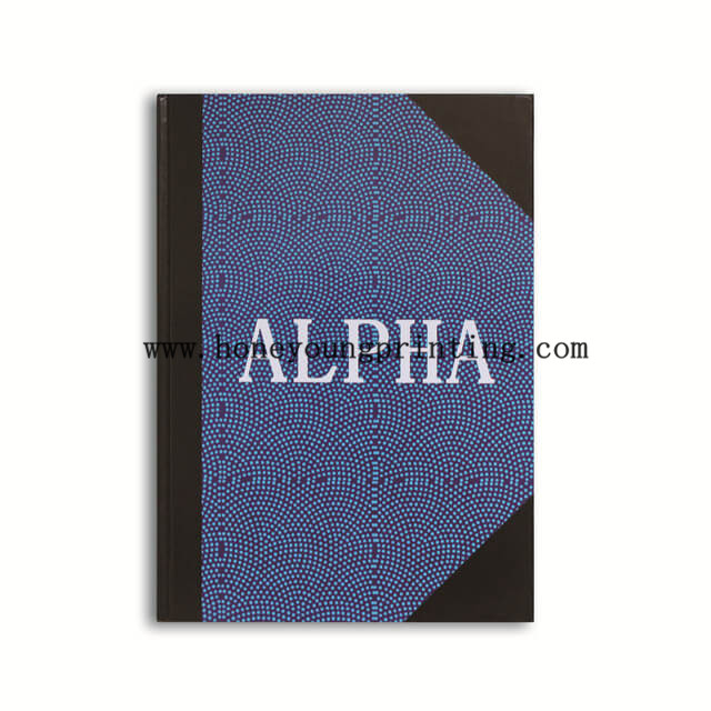 A4 Hard cover notebook for student 8mm ruled and square