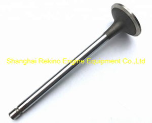 Cummins ISLE intake valve 4981794 engine parts