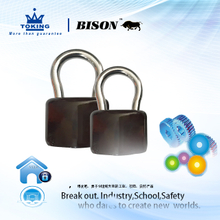 Anti Theft Iron Padlock XA113