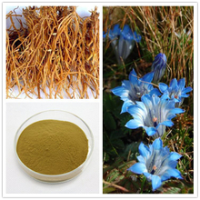 Herbal Extract Natural Gentian Root Extract Powder 3% -10% Gentiopicroside