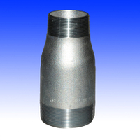 Npt Threaded Concentric Swage Nipple (YZF-P39)