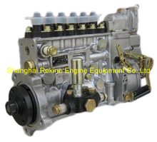 BP5136 612600081153 LONGBENG fuel injection pump for Weichai WD618