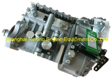 BP5874 612600081206 Longbeng fuel injection pump for Weichai WD615