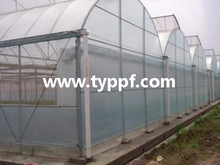 10mil Greenhouse plastic sheeting