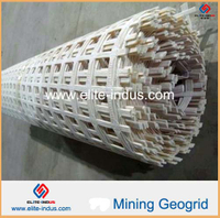 Polyester Mining Geogrid