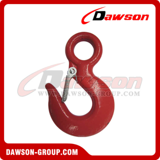 DS130 Eye Hoist Hook con cierre