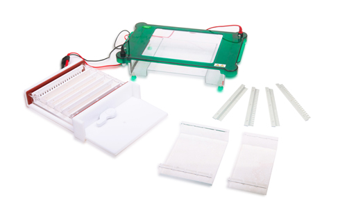 FSF-SPGT Horizontal Electrophoresis Cell
