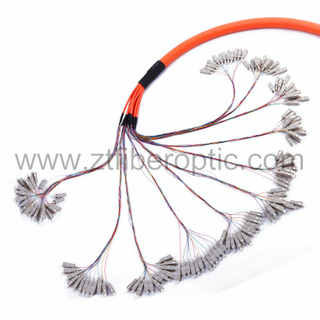 144fibers Multimode Sc Optical Pigtail